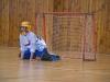 sport_den_2013_117