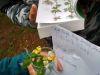 bio_projekt_den_prima_sekunda011